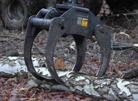 Lesnický drapák